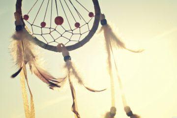 Légendes amérindiennes: découverte de l'érable